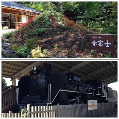 三島・楽寿園2