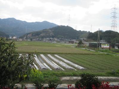 20140405-06kokura61.jpg