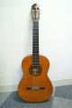 Morris モーリス MC-112 アコースティックギター