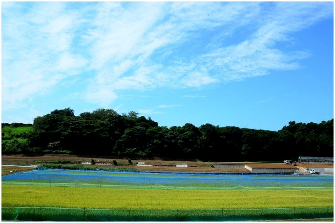 20140912miura000n.jpg