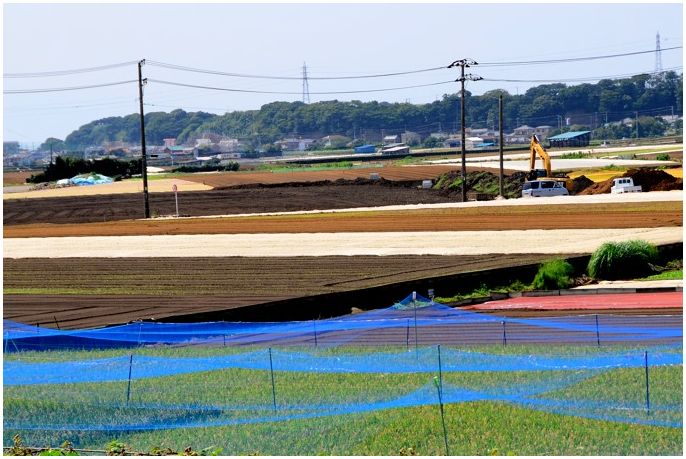 20140912miura007.jpg