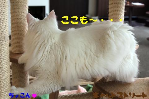 3959.jpg