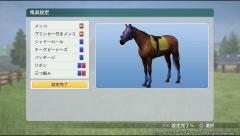 馬具の設定