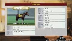 '82米年度代表馬