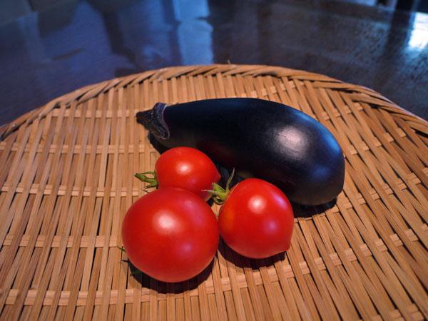 20140804収穫