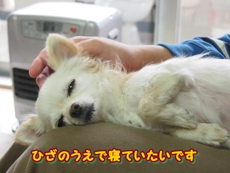 blog3257a.jpg