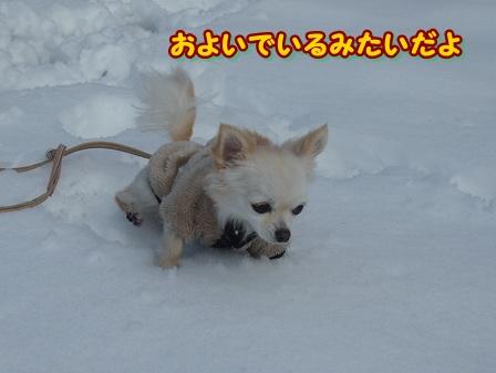 blog3410a.jpg