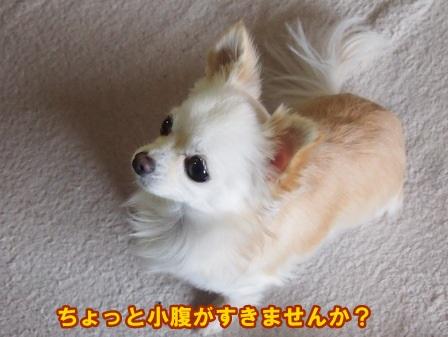 blog3453a.jpg
