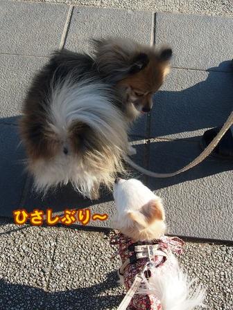blog3489a.jpg