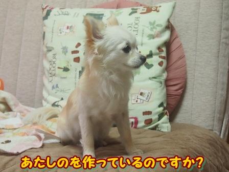 blog3542a.jpg