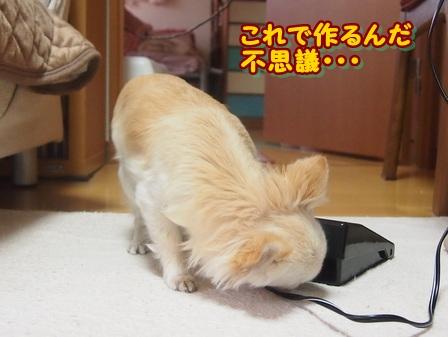 blog3546a.jpg
