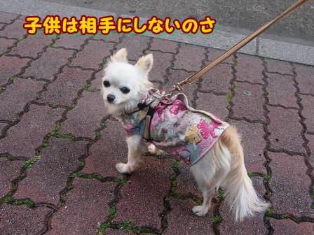 blog3591a.jpg