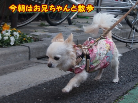 blog3620a.jpg