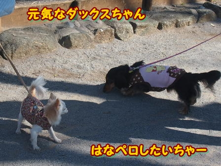 blog3702a.jpg