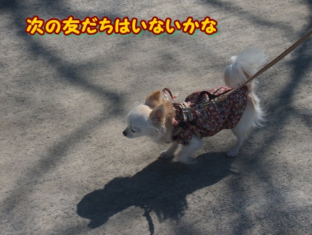 blog3704a.jpg