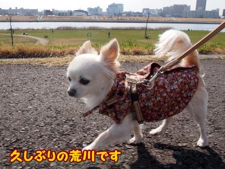 blog3709a.jpg