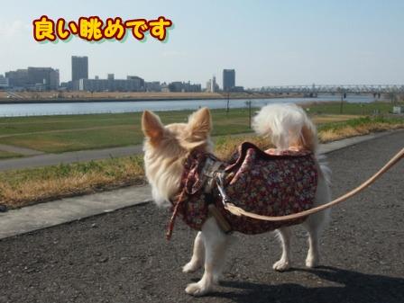 blog3714a.jpg