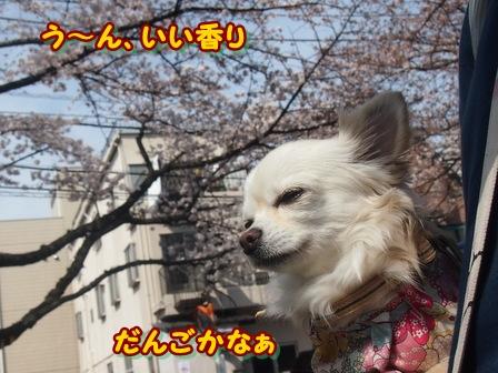 blog3730a.jpg