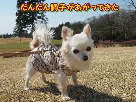 blog3842a.jpg