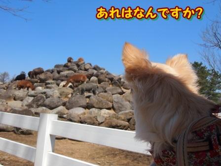blog3847a.jpg