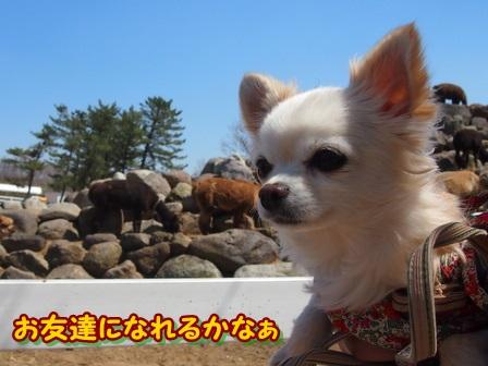 blog3848a.jpg