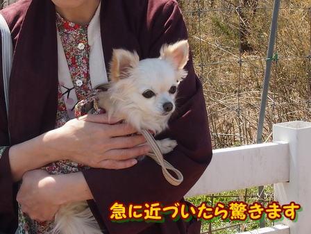 blog3849a.jpg