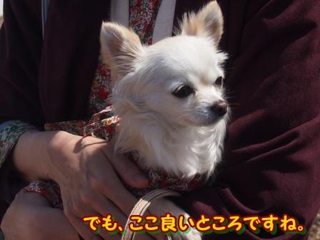 blog3851a.jpg