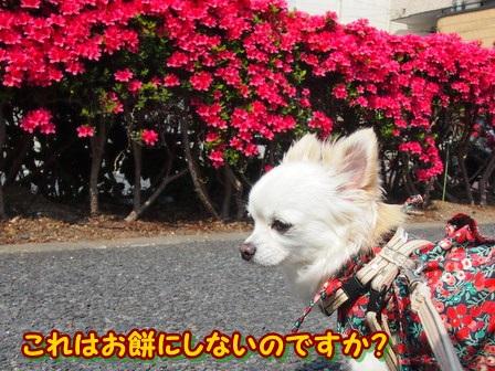 blog3881a.jpg