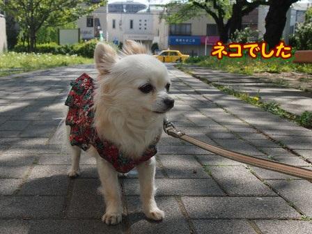 blog3893a.jpg