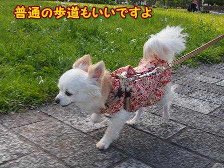 blog3947a.jpg
