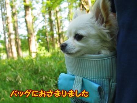 blog3957a.jpg