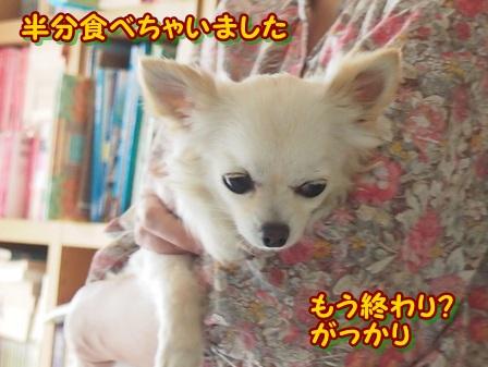 blog3984a.jpg