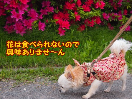 blog3991a.jpg