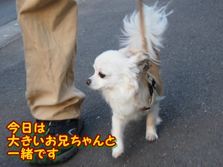 blog4017a.jpg
