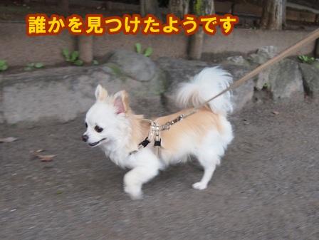 blog4220a.jpg