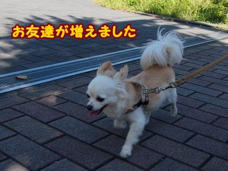 blog4312a.jpg