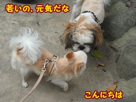 blog4345a.jpg