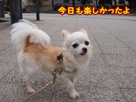 blog4346a.jpg