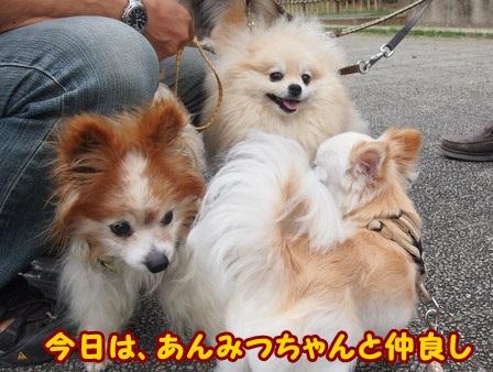 blog4349a.jpg