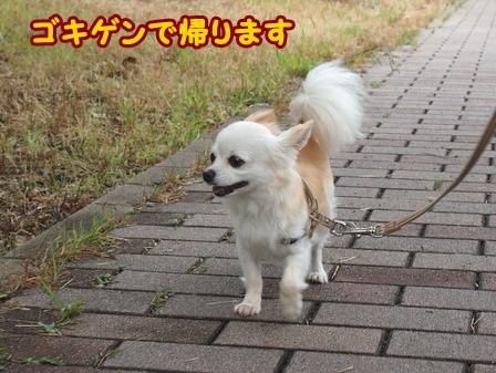 blog4379a.jpg