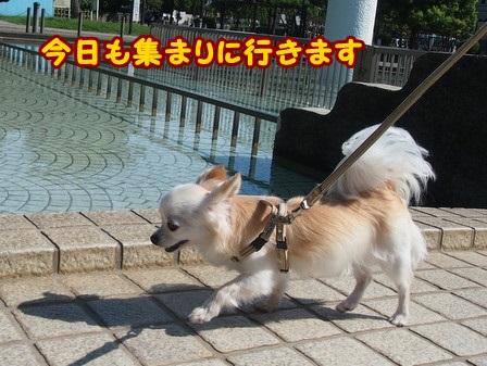 blog4405a.jpg