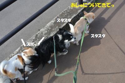 DSC_3164_convert_20140220105623.jpg