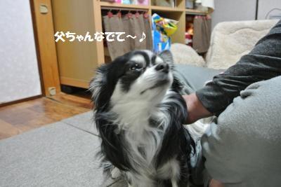 DSC_3512_convert_20140311130601.jpg