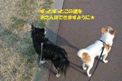 DSC_3638_convert_20140310133820.jpg