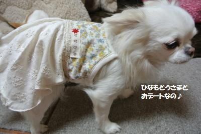 DSC_3716_convert_20140318132751.jpg