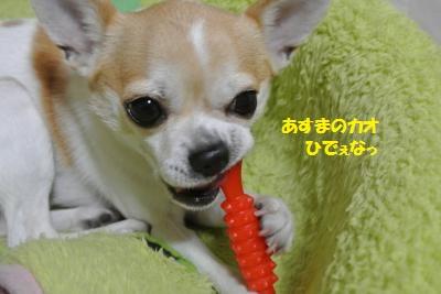 DSC_3783_convert_20140326110134.jpg