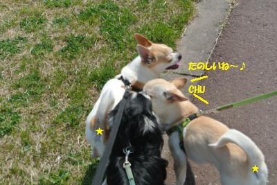 DSC_4035_convert_20140401111526.jpg