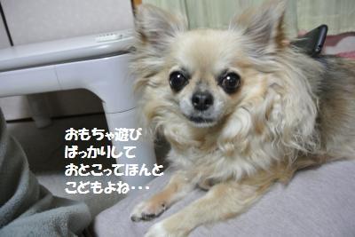 DSC_4987_convert_20140515112010.jpg