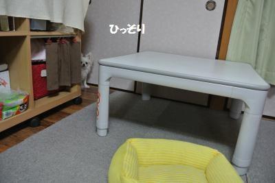 DSC_5293_convert_20140523103328.jpg