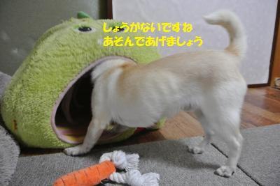 DSC_5899_convert_20140619110951.jpg